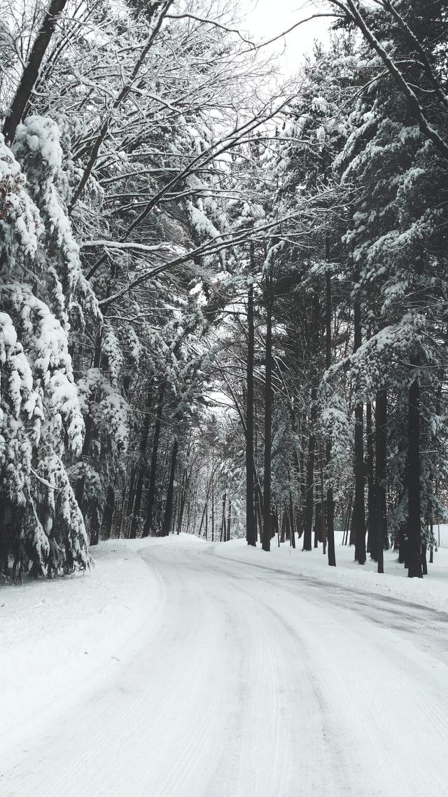 зимен заснежен път